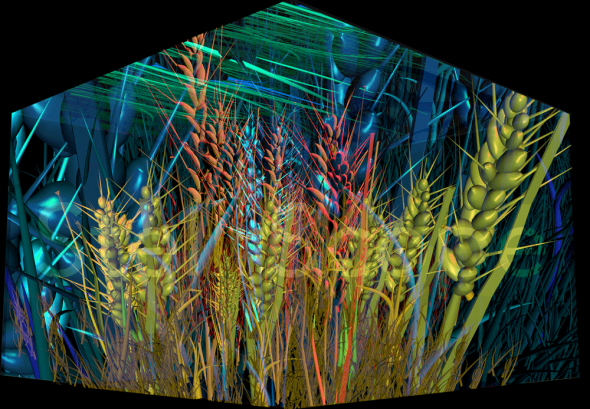 3D Wheat Concept by Eleanor Gates-Stuart: Enlighten 2013 Architectural projection on Questacon