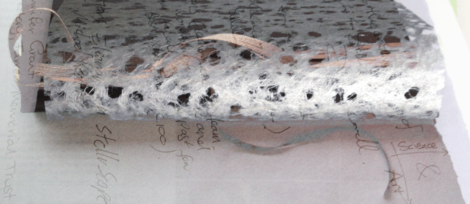 Image: 'Pages' - Visitor Comments Book